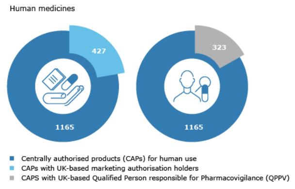 Brexit Arzneimittelversorgung